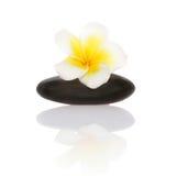 Smooth pebble and frangipani flower Stock Photography