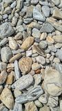 Smooth pebble stones on the shore are gray dry Stock Photography