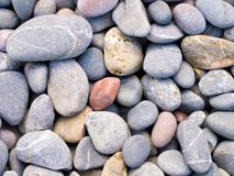 Smooth pebbles. Pile of smooth gray pebbles Stock Image