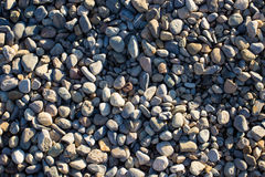 Smooth pebbles background. Honed stones in Villa Reale Monza - Italy Stock Images