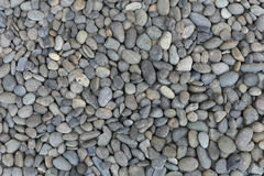 Smooth river pebble stone Royalty Free Stock Photography