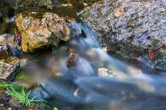 Smooth River Stream Stock Photos