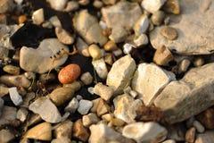 Smooth rock among rough rocks Royalty Free Stock Image
