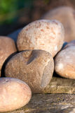 Smooth rocks on a wall in warm morning light Royalty Free Stock Images