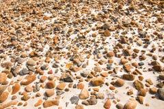 Smooth round pebble stones on the sand beach backgound. Close-up of smooth round pebble stones on the sand beach backgound Royalty Free Stock Photo