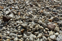Smooth sea stones Royalty Free Stock Photography