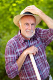 Smooth senior gardener Stock Image