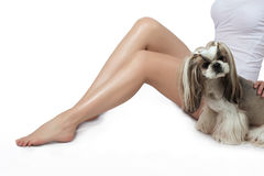 Smooth and silky female feet. Depilation. Shugaring. Little shih Royalty Free Stock Image