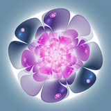 Smooth and soft fractal flower Royalty Free Stock Photos