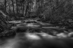 Smooth Spring River BW Royalty Free Stock Images