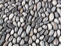 Smooth stones background Stock Image