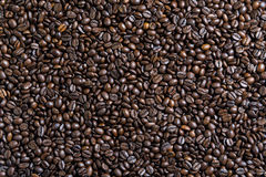 Smooth surface of the coffee beans. Smooth surface of the roasted coffee beans Stock Photo