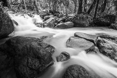 Smooth waterfall in forest Stock Images