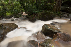 Smooth waterfall in forest Royalty Free Stock Photography