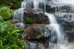 Smooth Waterfall and green leaves Royalty Free Stock Image