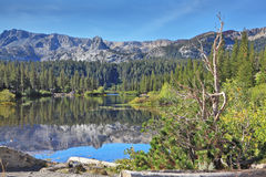 The smooth waters of a mountain lake Stock Photography