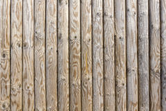 Smooth wood pine poles Stock Image