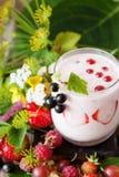 Smoothie ягоды с свежими ягодами и травами лета Стоковое Изображение RF