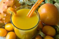 Smoothie avec les fruits tropicaux Image libre de droits