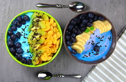smoothie of blueberries,banana and kiwi in two round bowls stock photos