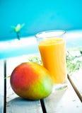 Smoothie cremoso del mango Imagenes de archivo