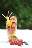 Smoothie da fruta do verão Fotos de Stock