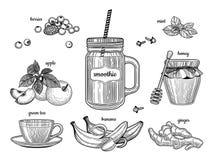 Smoothie dans un pot en verre Les ingrédients individuels Baies, pomme, thé vert, banane, gingembre, miel, menthe illustration libre de droits