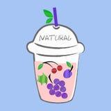 Smoothie de fruits frais, cartes colorées de l'eau de Detox avec différents fruits Photographie stock
