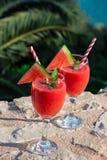 Smoothie de pastèque des vacances d'été par la mer Images stock