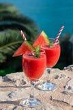 Smoothie de pastèque des vacances d'été par la vue de mer Images stock