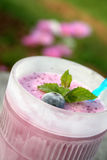 smoothie del mirtillo Immagine Stock