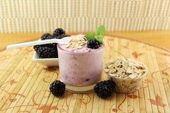 Smoothie hecho en casa de Blackberry con la fruta y la harina de avena de la zarzamora Fotos de archivo libres de regalías
