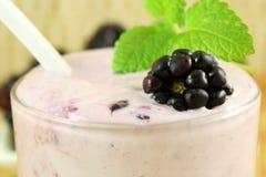 Smoothie hecho en casa de Blackberry con la fruta y la harina de avena de la zarzamora Fotografía de archivo libre de regalías