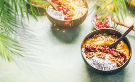 Smoothie mango bowl with chia seeds yogurt pudding and cranberries, nuts, oatmeal topping in coconut shells with spoon. Healthy. Clean breakfast food. Copy royalty free stock images