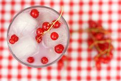 Smoothie with milk and red currant Stock Photography