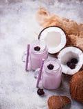 Smoothien med björnbär och kokosnöten mjölkar Royaltyfri Bild