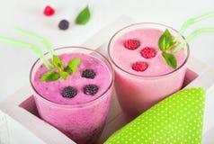 Smoothies молокозавода поленики и ежевики с свежими ягодами Стоковое Изображение