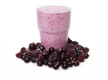 Smoothies of blackberry and black currant with yogurt royalty free stock photo