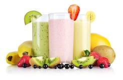 Smoothies do fruto Imagem de Stock
