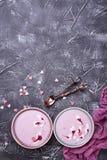 Smoothies doux de baie dans des cuvettes Dessert sain Images libres de droits