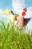 Smoothies in the garden Stock Photos