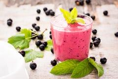 Smoothies med den svarta vinbäret och yoghurt- och mintkaramellsidor royaltyfria bilder