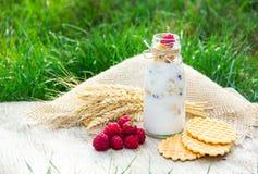 Smoothies med hallon och granola, dillandear Användbar frukost i natur Ha picknick i trädgården Royaltyfri Fotografi