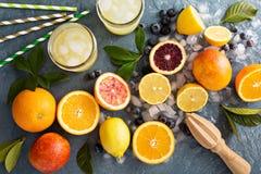 Smoothies och drinkar för danande citrusa Fotografering för Bildbyråer