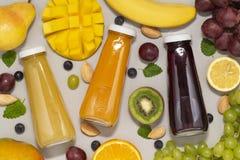 Smoothies sains avec les ingrédients organiques frais Nourritures superbes et santé ou concept de nourriture de régime de detox image libre de droits