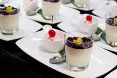 Smoothieyoghurt och glass Royaltyfria Bilder