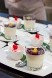 Smoothieyoghurt och glass Arkivbild