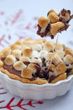 Smore cake Stock Images