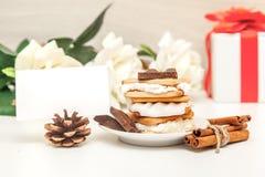 Smore - kakor, choklad och marshmallower - traditionell efterrätt - kortåtlöje upp royaltyfria foton