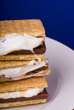 Smores Foto de Stock Royalty Free